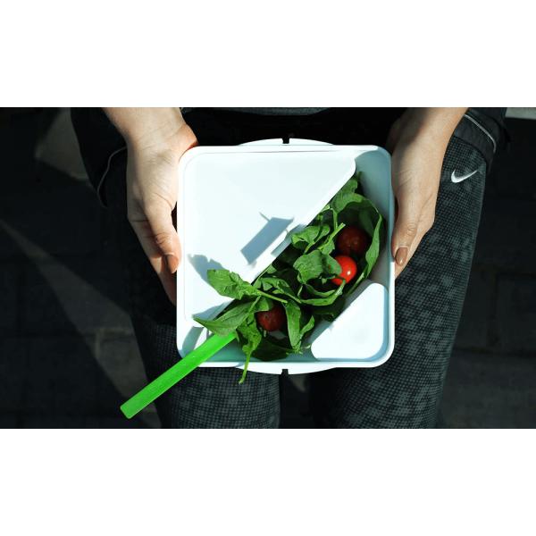 حافظة طعام / حجم صغير بلون ليموني بلاك بلوم